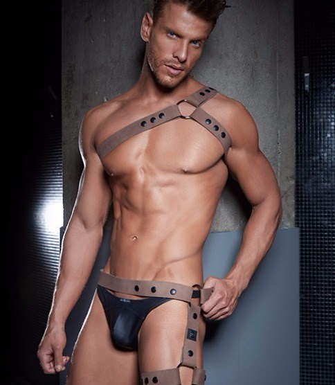 leather harness and faux leather black thong